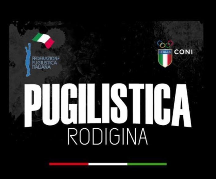 Il logo della Pugilistica Rodigina, società nella quale milita Michele Brusaferro